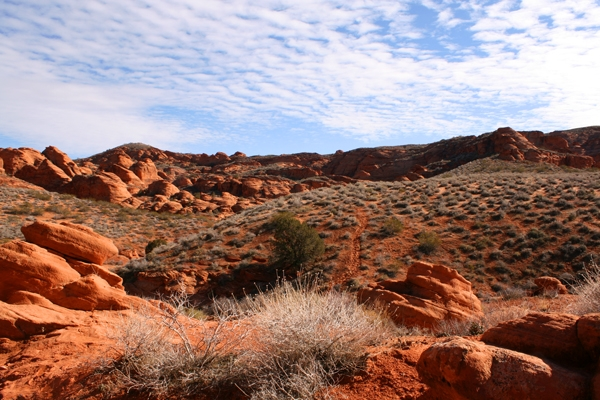 Along the Elephant Arch Trail